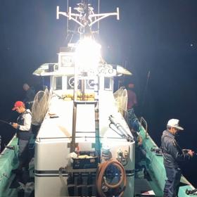 ✳️2019.6.1 アジ泳がせ釣り→夜イカ釣り初出船!の画像