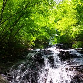 親切な幻の滝の画像