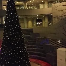*東京オペラシティビル イルミネーション*の画像