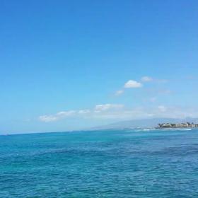 park 散歩       Hawaii 動画の画像