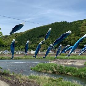高知県足摺市へ〜1日目の画像