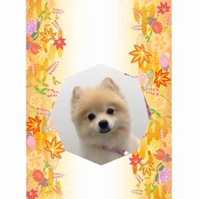 ♡9月のお友達♡の画像