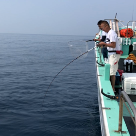 ✳️2019.6.6 アジ泳がせ釣り → ✴️夜イカ釣り (日中は暑かったし、夜は雨に打たれたし、)の画像
