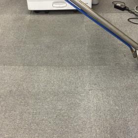 カーペット洗浄動画@仙台市の画像