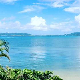 今朝の名蔵湾 動画の画像