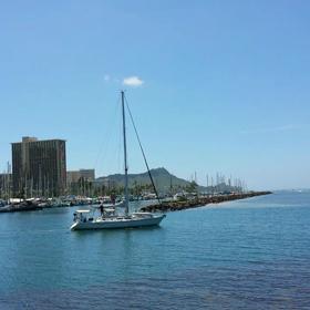 Hawaii 動画の画像