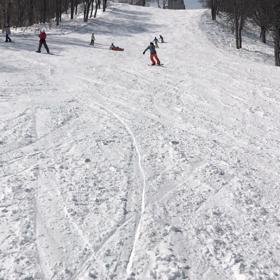 第2弾 野沢温泉スノーボードツアーの画像