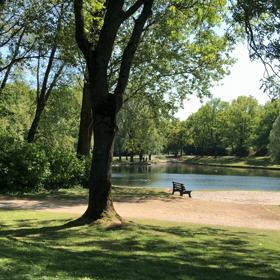 自然の恵み@公園の画像