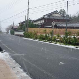 本日の雪情報の画像