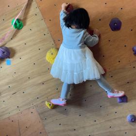 登るだけじゃ飽きちゃう子どもを登らせる方法の画像