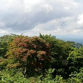 日曜日の 階上岳。の画像