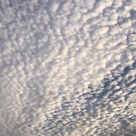 夏至の空模様の画像
