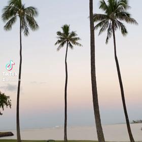 おはようfrom Hawaiiの画像